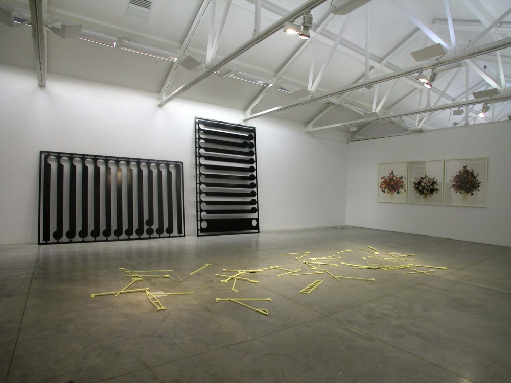 The image shows a white gallery space with a concrete floor. On the floor is a haphazard arrangement of bright yellow, enlarged thin ladders, rakes, spades and other such tools. Against the back left hand wall lean two huge, enlarged black kitsets filled with korus, mimicking the style of Gordon Walter's paintings. On the right hand wall hang three framed photographs of vases of flowers.