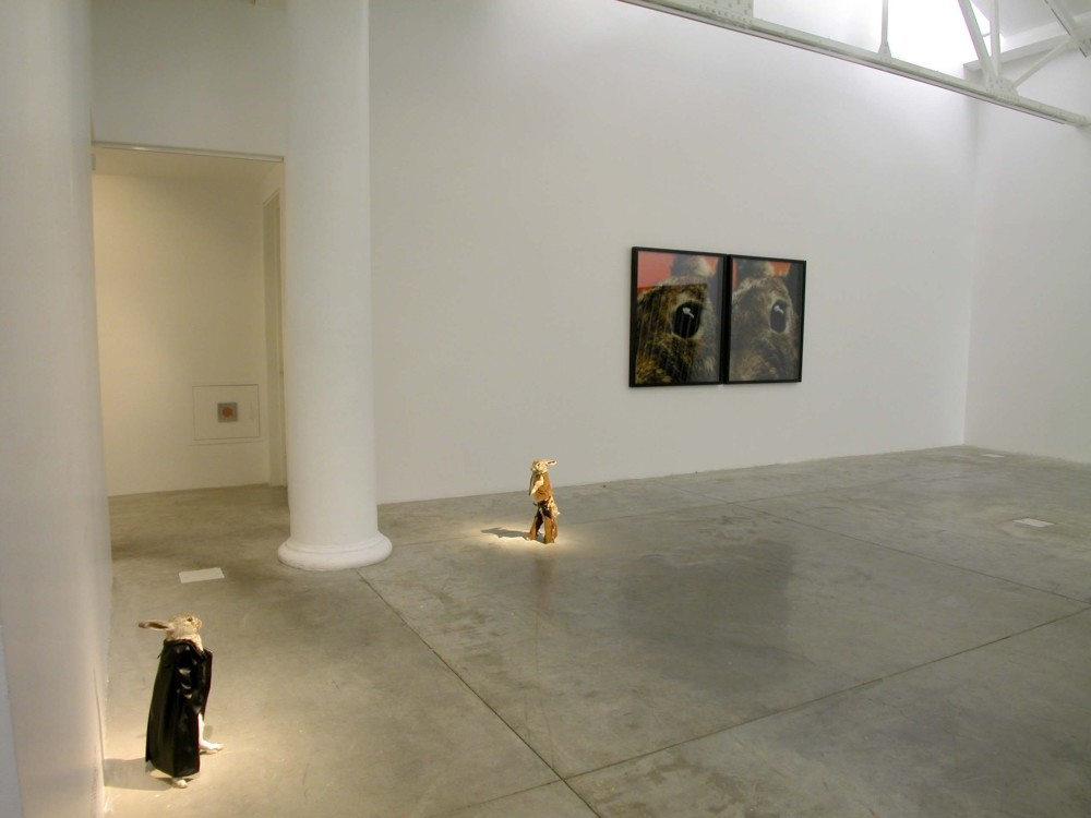 The image shows a white gallery space with a concrete floor. On the floor in the left hand of the image stand two taxidermied rabbits, facing each other but at a distance. They appear to be locked in a dramatic stand-off, one dressed in a long black coat and the other in leather cowboy attire. Both are standing on their hind legs in a human fashion. On the wall behind them hang two large framed photographs of, each showing a rabbit's face zoomed in on the eye.